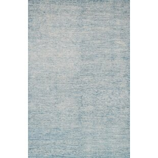 Baby Blue Area Rugs Rug Ideas