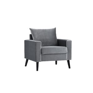 Portillo Velvet Armchair by Varick Gallery
