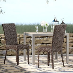 Tanja Patio Dining Chair (Set Of 2)