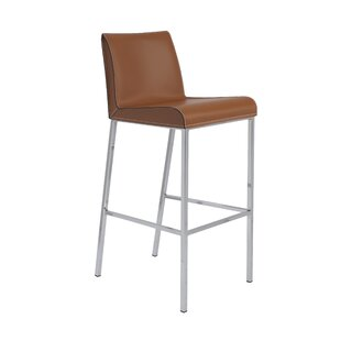 Bergenfield 30.5 Bar Stool (Set of 2)