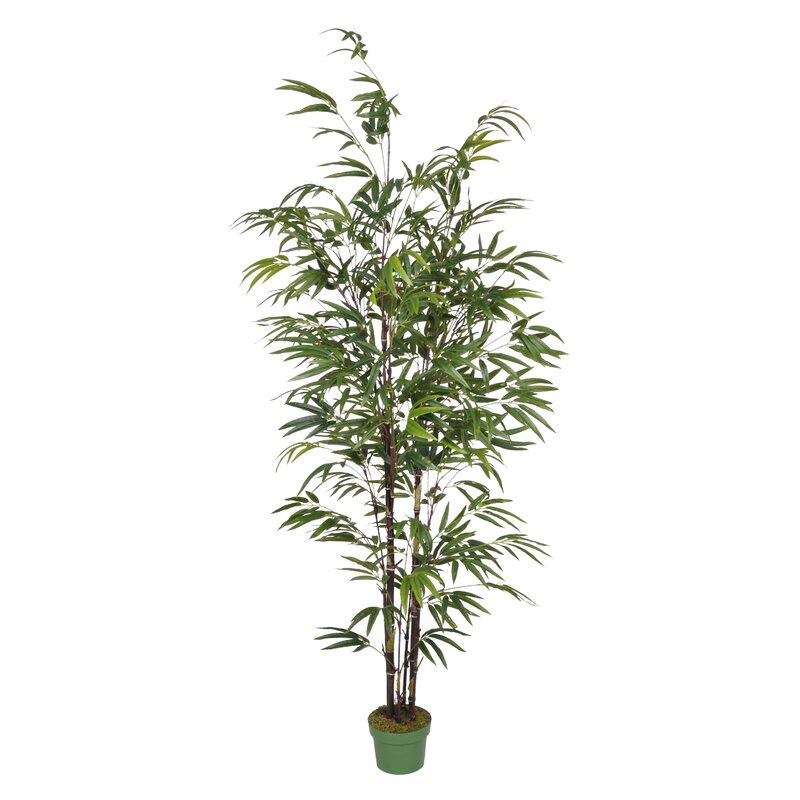 Beachcrest Home Artificial Bamboo Tree in Pot & Reviews | Wayfair on artificial bamboo potted plant, artificial house plants & trees, artificial ficus trees for home decor, china doll plant, artificial bamboo vine,