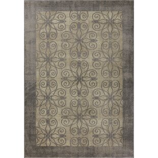 Best Deals Winston Looking Glass Greige Area Rug By Libby Langdon