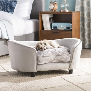 Pet Furniture You Ll Love Wayfair