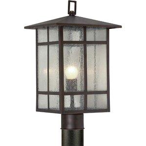Outdoor 1-Light Lantern Head  sc 1 st  Wayfair & Forte Lighting | Wayfair azcodes.com