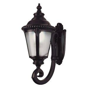 Villegas 1-Light Outdoor Wall Lantern