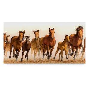 running horses wall art wayfair