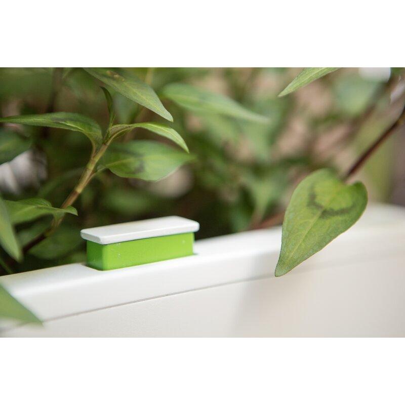 Glowpear Mini Self Watering Plastic Wall Planter Wayfair