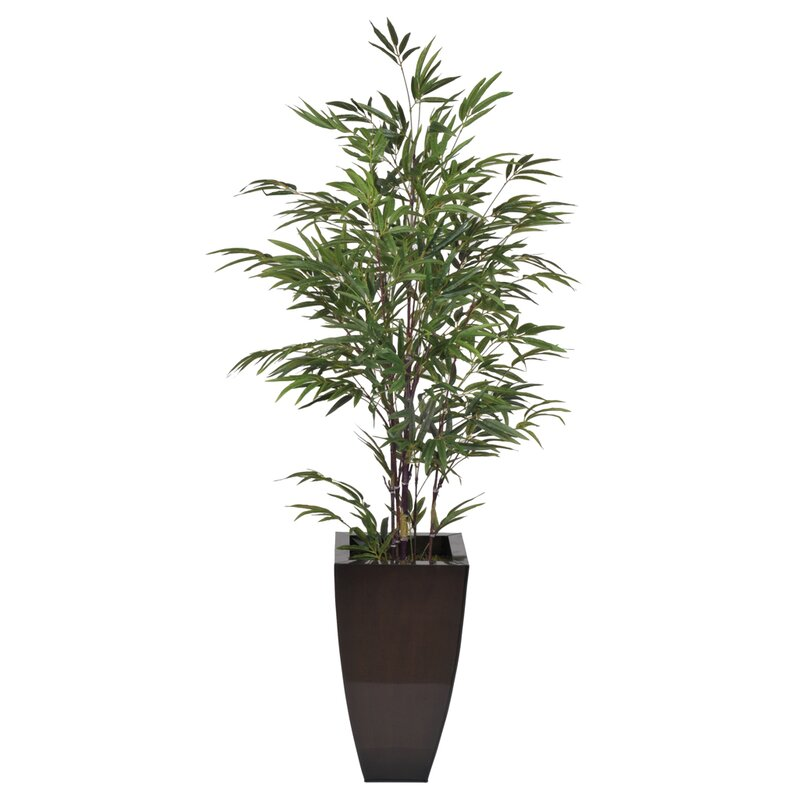 Camelopardalis Artificial Black Bamboo Tree In Planter