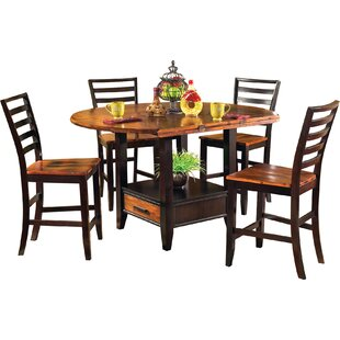Hidalgo 5 Piece Counter Height Drop Leaf Solid Wood Dining Set