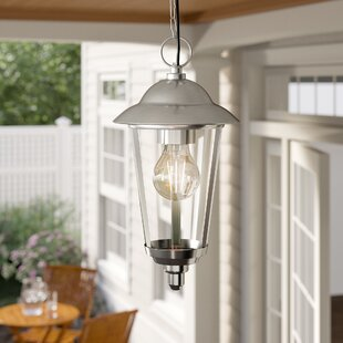 Outside Porch Light Hanging Wayfair Co Uk
