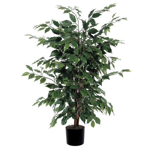 artificial trees you'll love | wayfair.ca