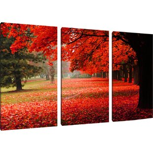 Red Coloured Park In Autumn 3 Piece Photographic Print On Canvas Set