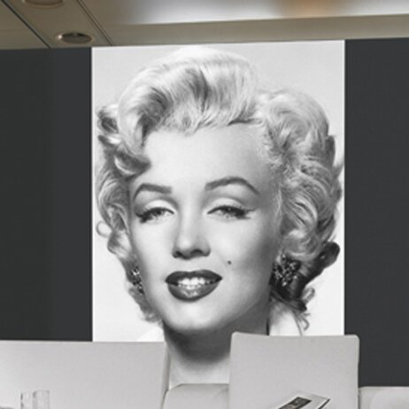 Superior Brewster Home Fashions Ideal Decor Marilyn Monroe Wall Mural U0026 Reviews |  Wayfair Amazing Pictures