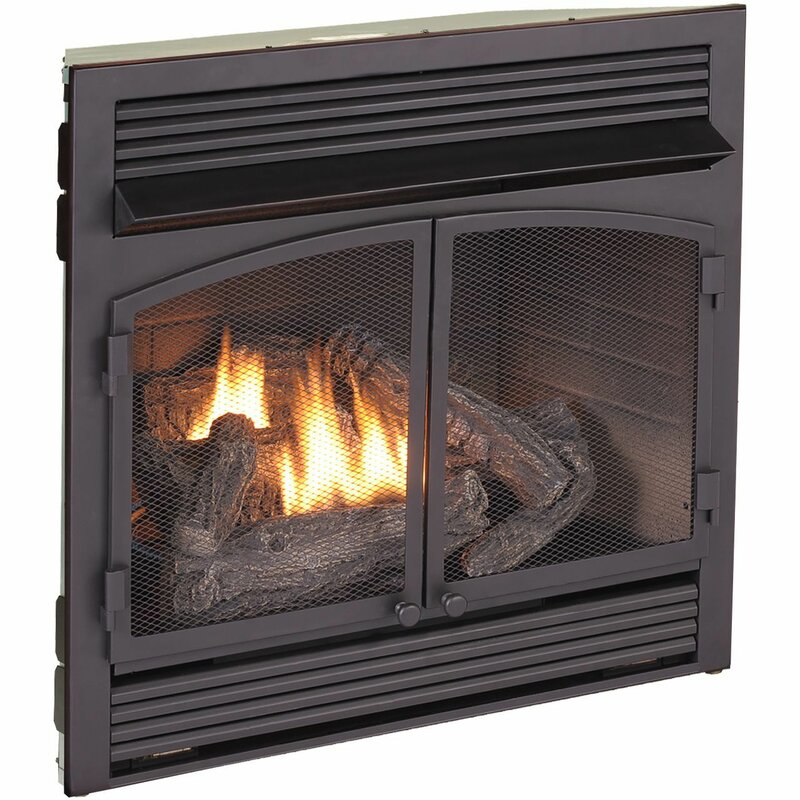 Astounding Vent Free Recessed Natural Gas Propane Fireplace Insert Home Interior And Landscaping Ponolsignezvosmurscom