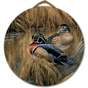 Back Waters Wood Duck Painting Print On