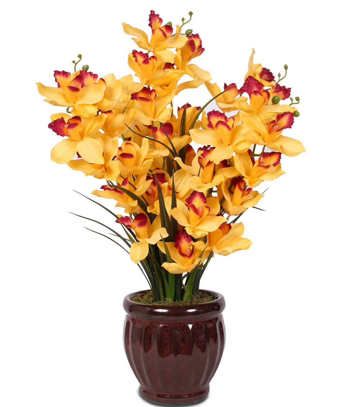 Fleur De Lis Living Soaring Cymbidium Orchids in Centerpiece Pot   Wayfair
