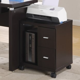Attractive 2 Drawer Mobile Filing Cabinet