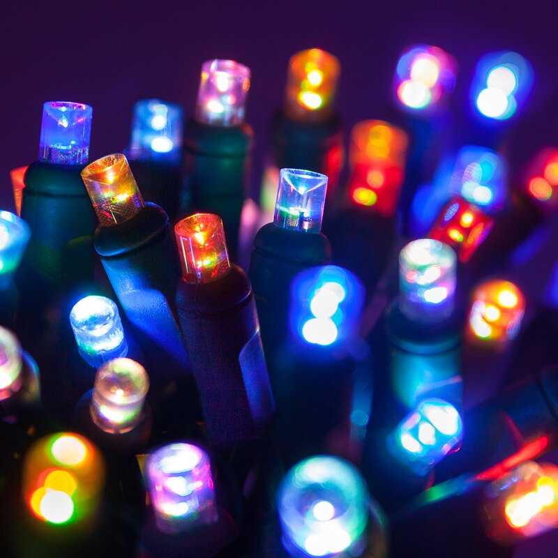 Wintergreen Lighting 50 Multi Color Led Christmas Light String Wayfair