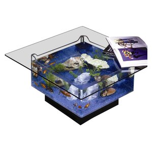 Midwest Tropical Fountain 25 Gallon Aqua Coffee Table Aquarium Tank Image