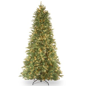 tiffany fir 75 green slim artificial christmas tree with 600 pre lit clear lights - White Christmas Tree Pre Lit