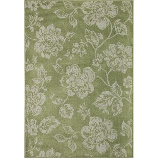 Look for Kofi Green/White Indoor/Outdoor Area Rug By Ophelia & Co.