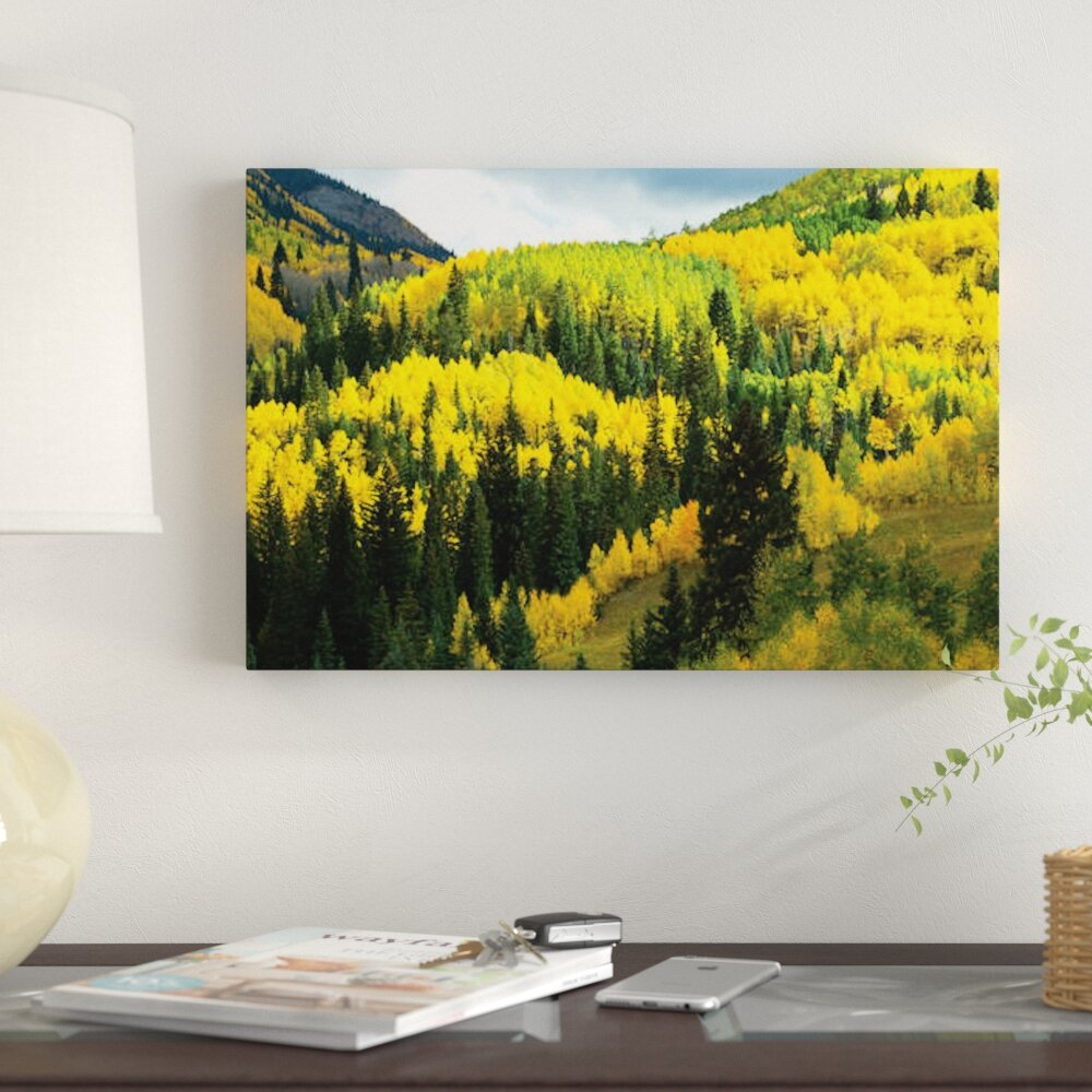 East Urban Home \'Aspen Trees in a Forest, Maroon Bells, Maroon Creek ...