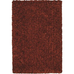 Terra Cotta Colored Rugs Wayfair