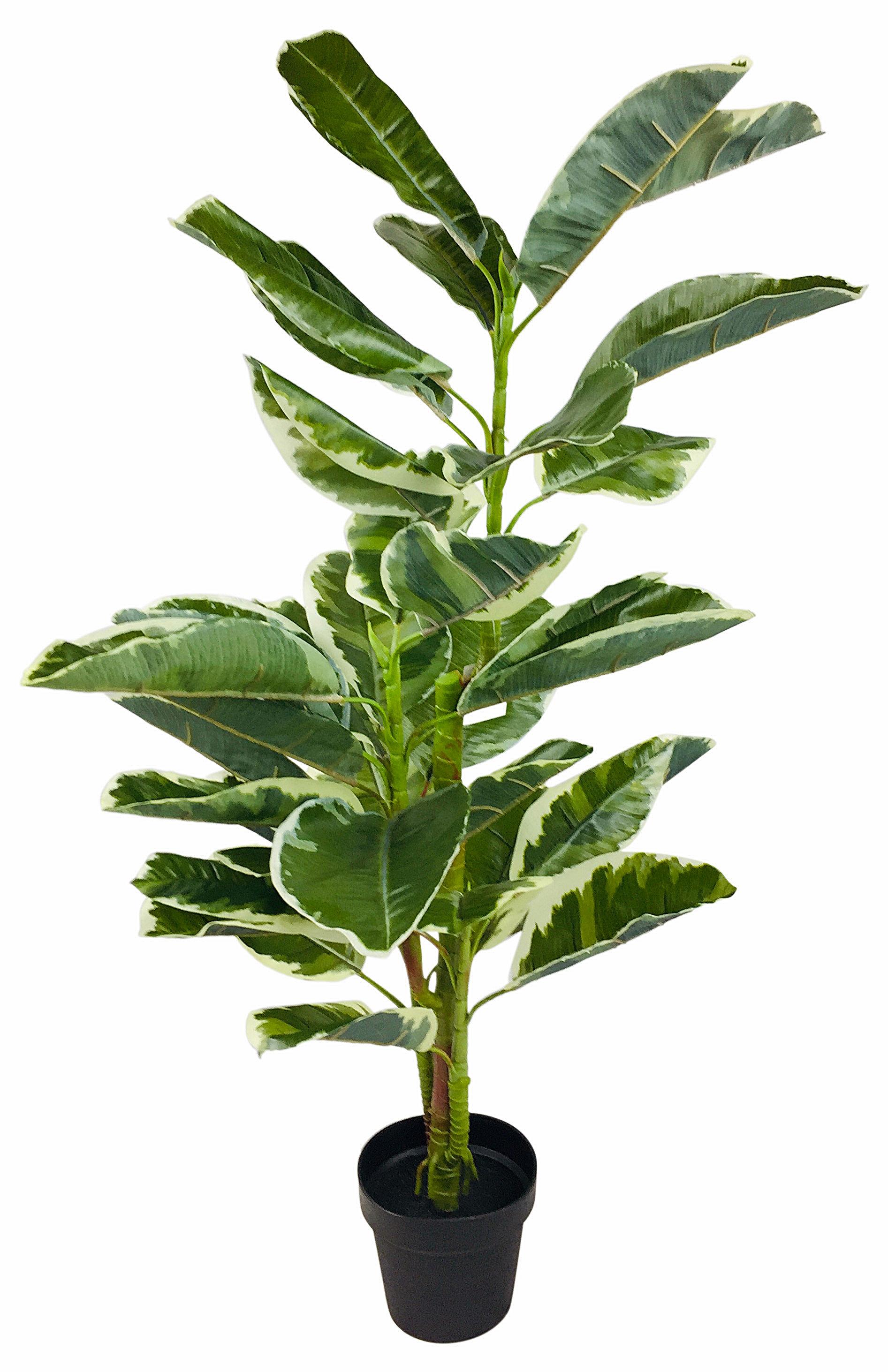 Artificial Rubber Ficus Plant