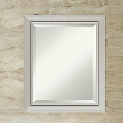 Narrow Wall Mirror orren ellis berenice narrow burnished silver frame rectangle