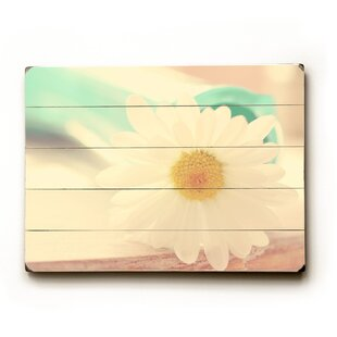 Soft White Flower Wall Art