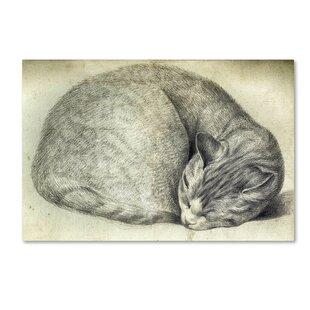U0027Sleeping Catu0027 Wall Art On Wrapped Canvas
