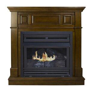 Indoor Propane Fireplace   Wayfair