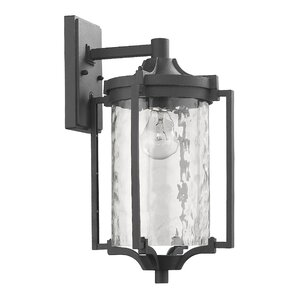 Chateaugay 1-Light Outdoor Sconce