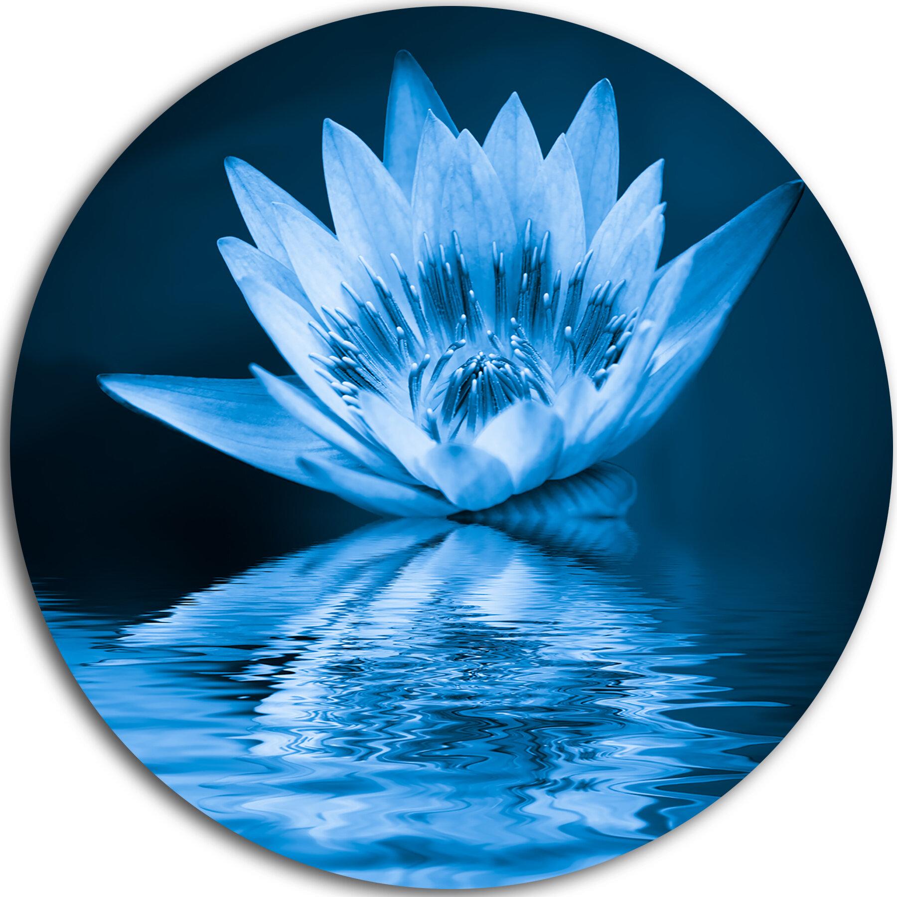 Designart blue water lily graphic art print on metal wayfair izmirmasajfo