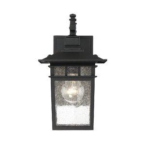 Barnstable 1-Light Outdoor Wall Lantern