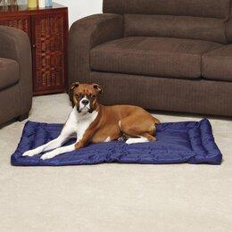 Dog Beds You Ll Love Wayfair