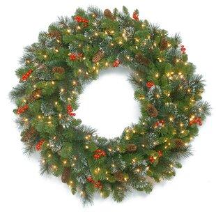 48 Lighted Plastic Wreath