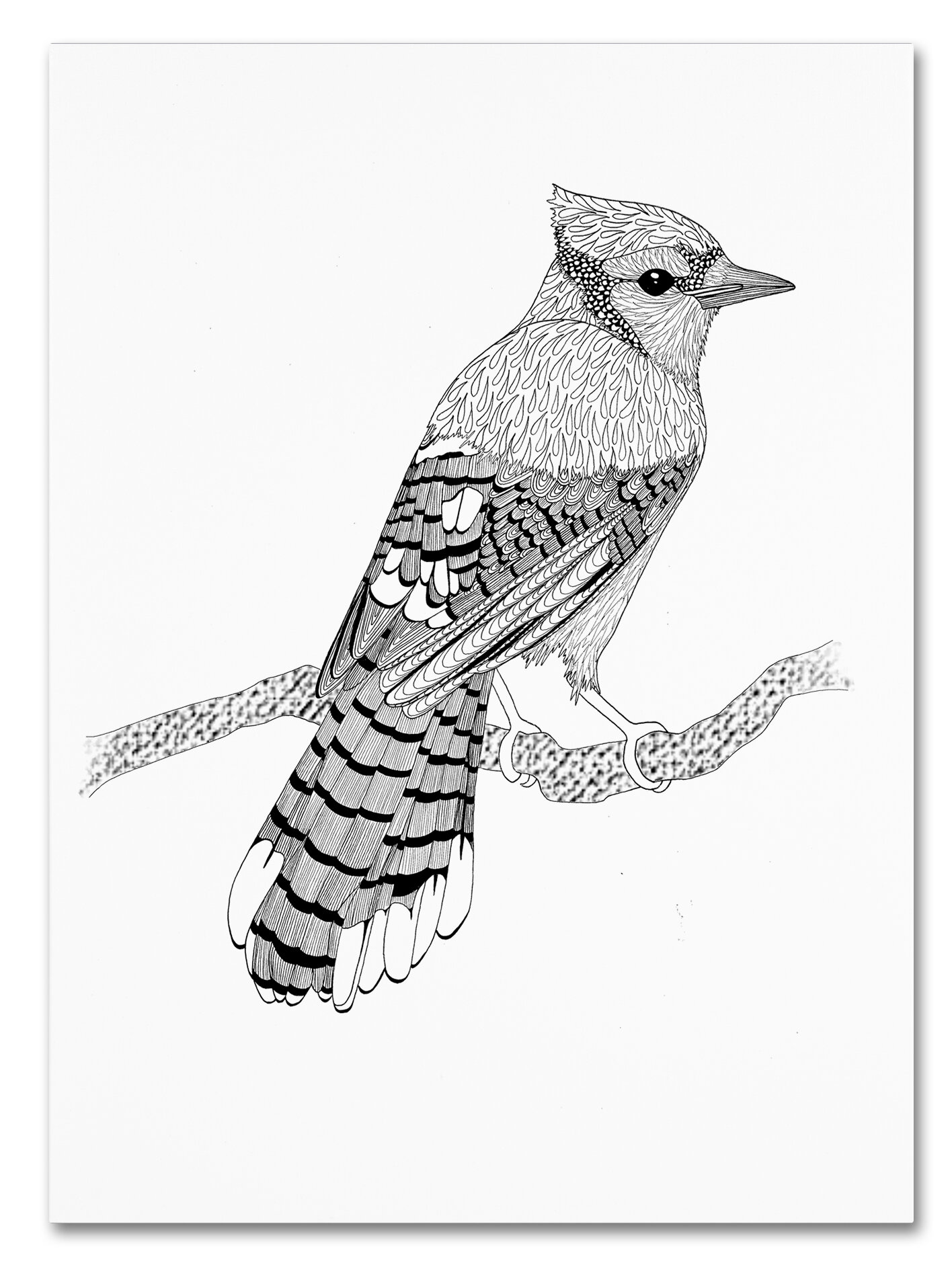 trademark art blue jay drawing print on wrapped canvas wayfair 1970s House Inside