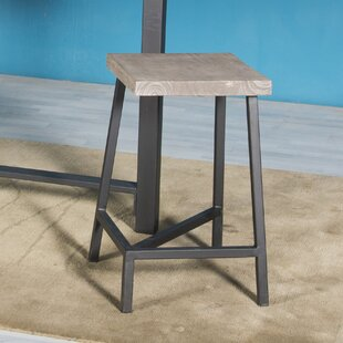 Speedwell Counter Height 24 Bar Stool (Set of 2)
