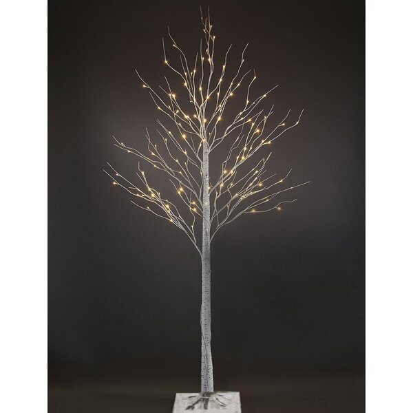 Top The Holiday Aisle 7' White Birch Artificial Christmas Tree with  XM36