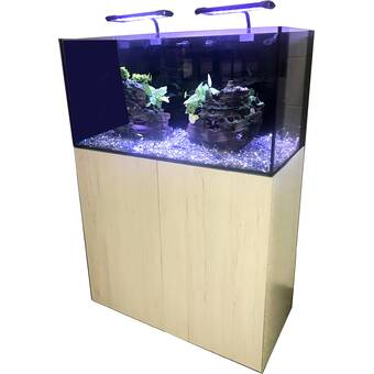 CrystalDynamicAquarium Easy Reef Aquarium Kit | Wayfair