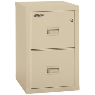 Turtle Fireproof 2 Drawer Vertical File Cabinet