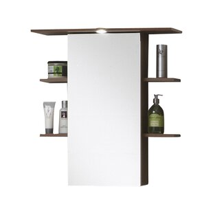 Matera 65 x 72cm Wall Mounted Cabinet by Wildon Home