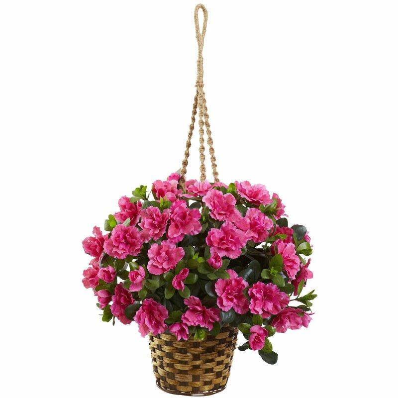 August Grove Silk Azalea Flowering Fl Arrangement In Hanging Basket Wayfair