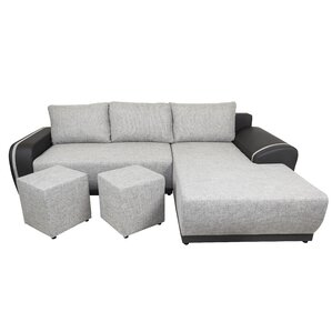 Regan Sleeper Sofa by Brayden Studio