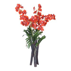 Vanda Orchid Flower and Foliage in Vase