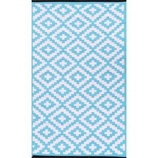 Nirvana Blue/White Indoor/Outdoor Area Rug ByGreen Decore