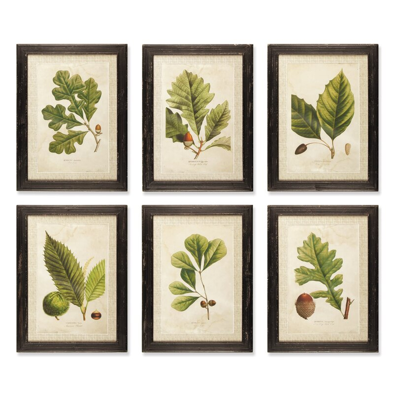 Birch lane deciduous framed prints reviews for Wayfair home decor canada