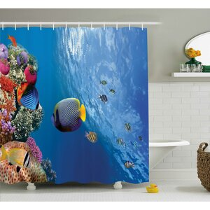 Bettye Tropical Emperor Long Living Angelfish Shower Curtain