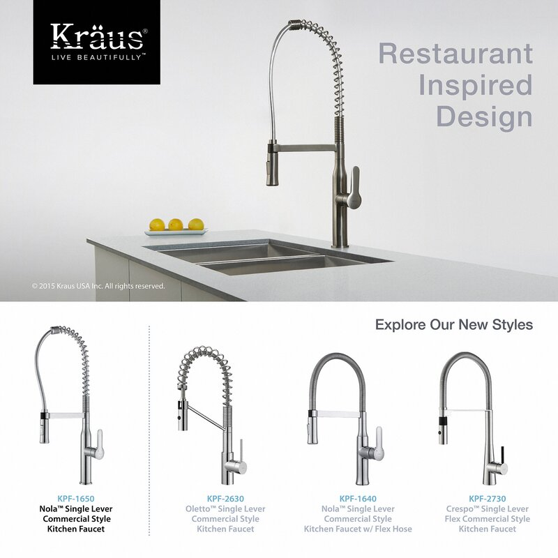 Awe Inspiring Nola Pull Down Single Handle Kitchen Faucet Download Free Architecture Designs Photstoregrimeyleaguecom